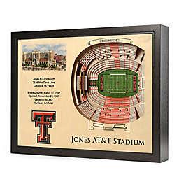Texas Tech University Stadium Views Wall Art
