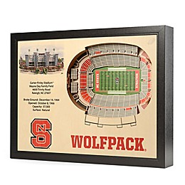North Carolina State University Stadium Views Wall Art