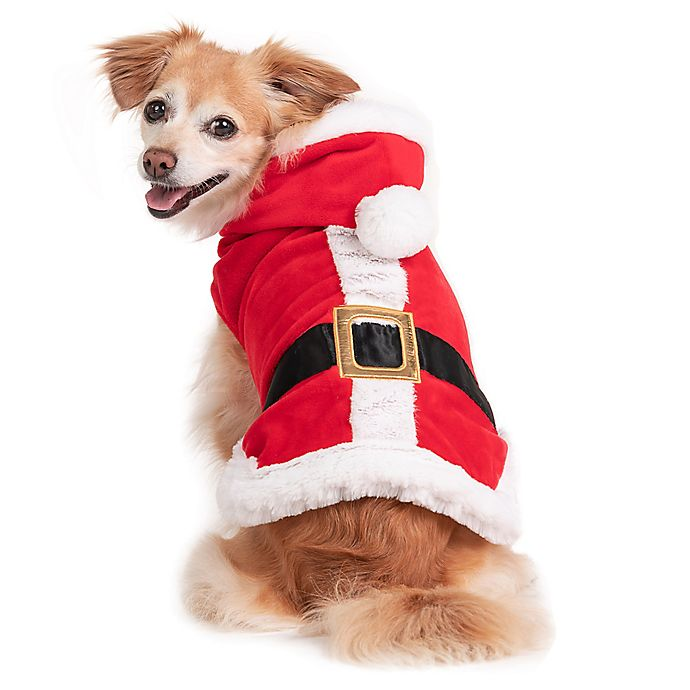 Alternate image 1 for Holiday Pet Santa Claus X-Small Costume