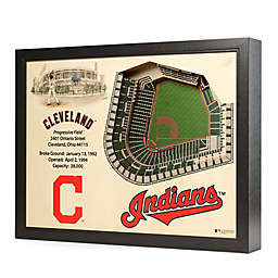 MLB Cleveland Indians Stadium Views Wall Art