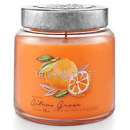 Tried & True™ Citrus Grove 15.5 oz. Jar Candle