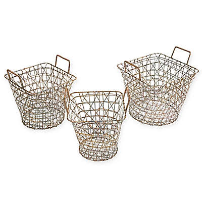 Madison Park 3-Piece Havana Baskets in Gold