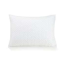 Fabulash Pillow Sham