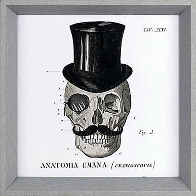 ArtMaison Canada Dandy Bones 13.5-Inch Square Framed Wall Art