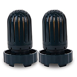 Air Innovations Filter Airin for Air Innovations Humidifiers (2-Pack)