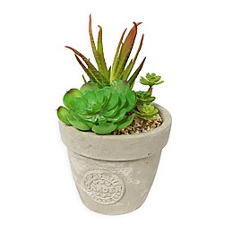 Puleo International Artificial Succulent Arrangement in Pot