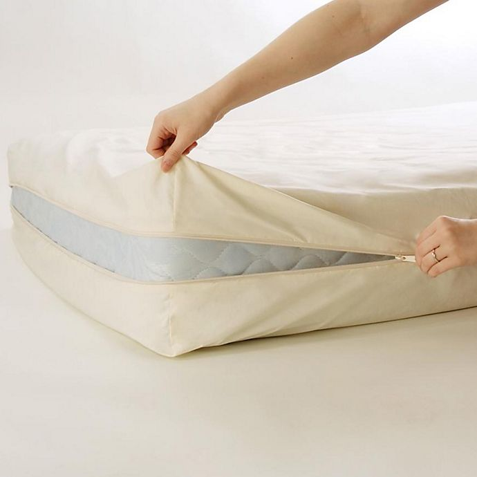 Alternate image 1 for BedCare™ by National Allergy® Organic Cotton 12-Inch Mattress Protector