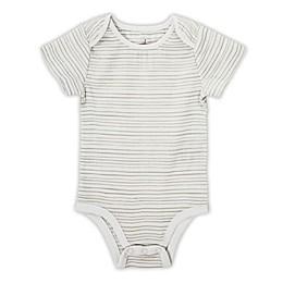 aden® by aden + anais® Short-Sleeve Stripe Bodysuit in Grey
