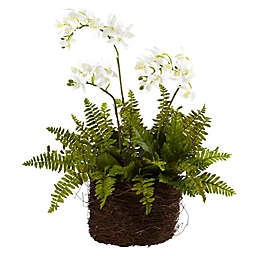 Nearly Natural 15-Inch Artificial Mini Phalaenopsis and Fern with Bird's Nest Planter