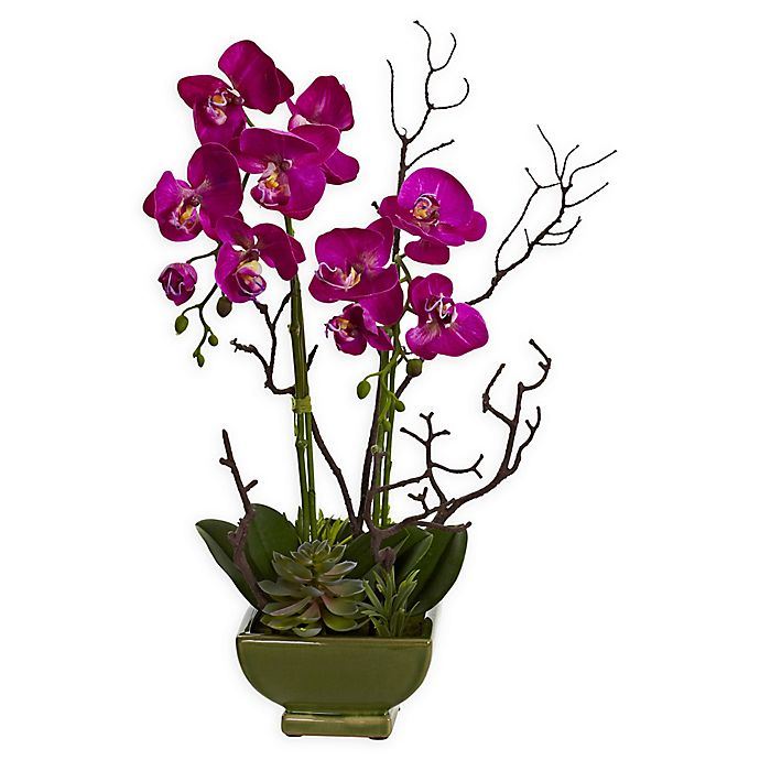 Alternate image 1 for Nearly Natural Orchid & Succulent Floral Arrangement