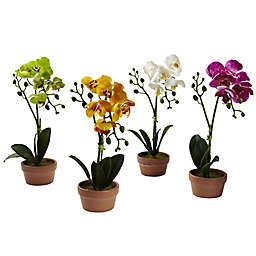 Nearly Natural 13-Inch Phalaenopsis Flower in Clay Vase (Set of 4)