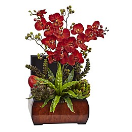 Nearly Natural 22-Inch Artificial Autumn Orchid and Succulent Arrangment with Brown Chest