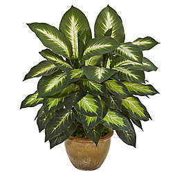 Nearly Natural 18-Inch Artificial Dieffenbachia Plant in Ceramic Planter