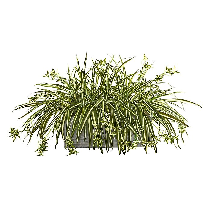 Alternate image 1 for Nearly Natural Artificial Spider Plant in Planter