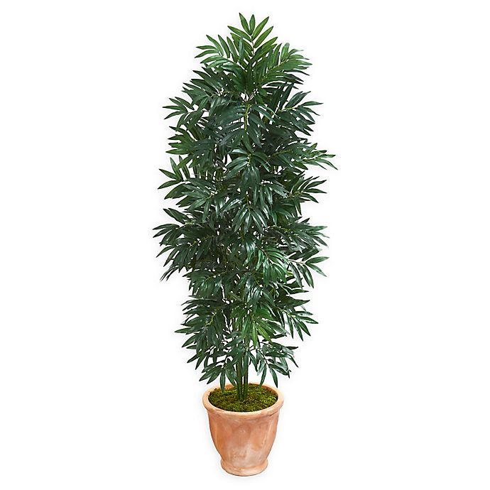 Alternate image 1 for Nearly Natural 5-Foot Bamboo Palm Tree with Terra Cotta Planter