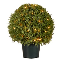 National Tree Company® 24-Inch Pre-Lit Cedar Topiary Artificial Tree