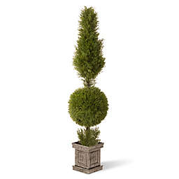 National Tree Company® 5-Foot Artificial Juniper Topiary Tree in Planter
