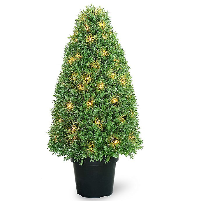 National Tree Company 36 Inch Pre Lit Boxwood Tree In Planter Bed