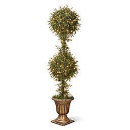 National Tree Company 60-Inch Pre-Lit 2-Ball Mini Tea Leaf Shrub