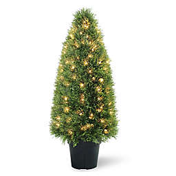 National Tree Company® Artificial Pre-Lit Juniper Tree in Planter