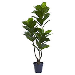 Nearly Natural 65-Inch Artificial Indoor/Outdoor Fiddle Leaf Tree