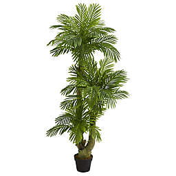 Nearly Natural 5-Foot Artificial Triple Phoenix Palm Tree