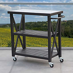 W Home™ Stonington Tile-Top Steel Patio Bar Cart in Black