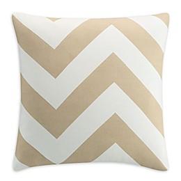 Clifton Chevron Square Throw Pillow in Blush