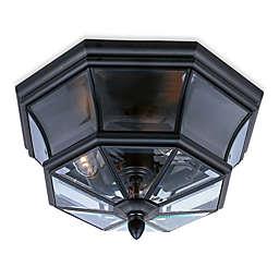 Elegant Newberry Outdoor Light