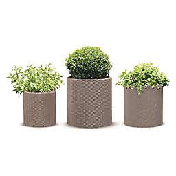 Keter® Cylinder 3-Piece Indoor/Outdoor Planter Set