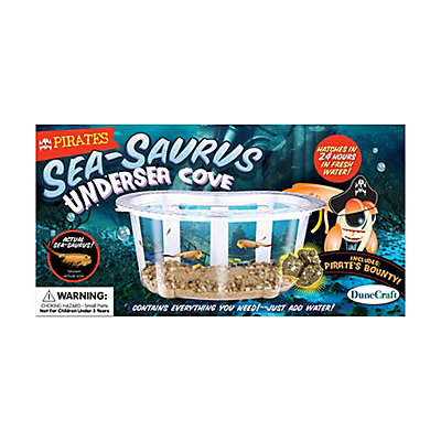 Dunecraft Pirates Sea-Saurus Undersea Cove Science Kit