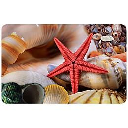 FoFlor Seashells 23\
