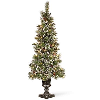 Winter Wonderland 5-Foot Pre-Lit Bristle Pine Entrance Tree