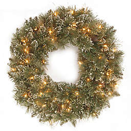 winter wonderland 24 inch pre lit glittery bristle pine wreath