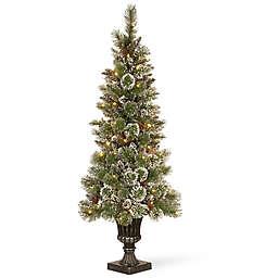 Winter Wonderland 5-Foot Pre-Lit Glittery Bristle Pine Entrance Tree