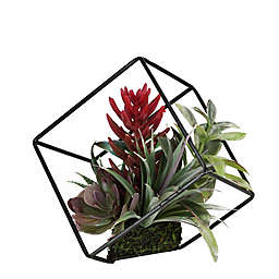 Northlight Artificial Succulents in Metal Wire Frame
