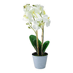 16.5-Inch Artificial White Orchid Plant in Pot