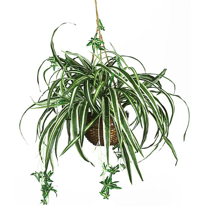 Alternate image 1 for Nearly Natural 20-Inch Spider Silk Plant Hanging Basket