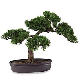 Nearly Natural 16-Inch Cedar Bonsai Tree