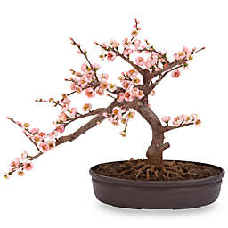 Nearly Natural 15-Inch Cherry Blossom Bonsai Tree