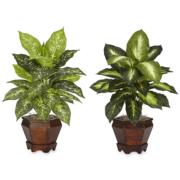 Alternate image 1 for Nearly Natural 20.5-Inch Silk Dieffenbachia Plant w/Wood Vase (Set of 2)