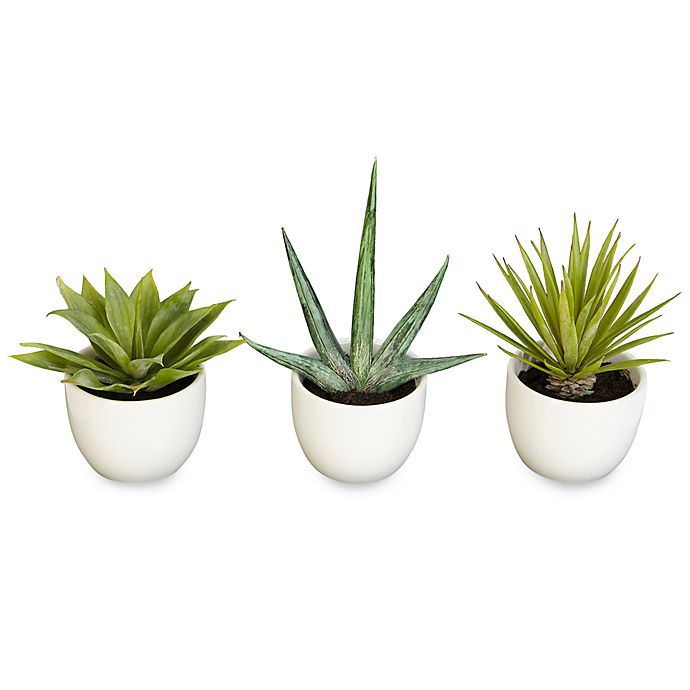 Alternate image 1 for Nearly Natural Southwest Silk Agave Collection (Set of 3)