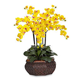 Nearly Natural 30-Inch Large Phalaenopsis Orchid Silk Flower Arrangement