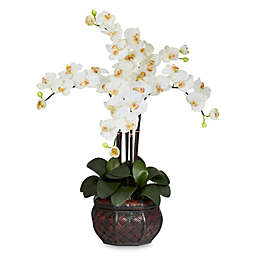 Nearly Natural 31-Inch Phalaenopsis Silk Flower Arrangement with Decorative Vase in Cream