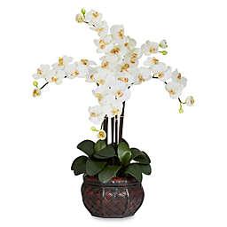 Nearly Natural 31-Inch Phalaenopsis Silk Flower Arrangement with Decorative Vase in Cream