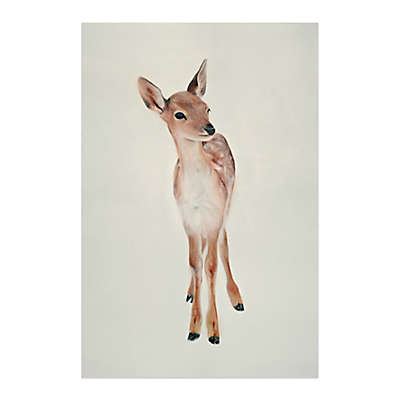 Baby Deer 24-Inch x 36-Inch Canvas Wall Art
