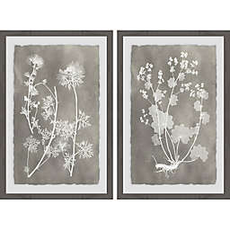 Marmont Hill Herbarium Study Diptych Framed Wall Art (Set of 2)