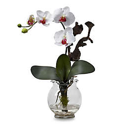 Nearly Natural 15-Inch Mini Phalaenopsis Silk Flower Arrangement