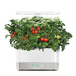 AeroGarden™ Harvest with Gourmet Herb Seed Pod Kit in White
