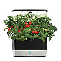 AeroGarden™ Harvest with Gourmet Herb Seed Pod Kit in Black